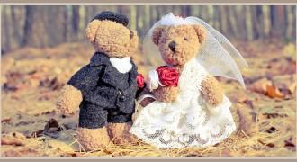 Main Article PIC _ Menentukan Ide Tema Pernikahan Anda